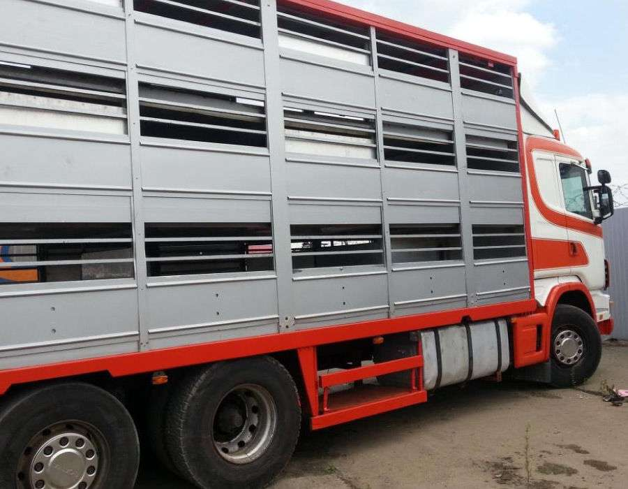 New Kuzov-skotovoz Livestock Body - 2019
