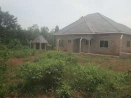 Hot selling 50 by 100ft plot for sale in Jogo -Bukerere at 9m