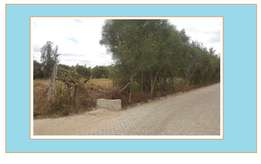 Half Acre Land For Sale, Karen