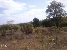 60 plots at kwa vonza ,50 by 100