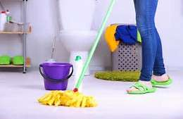 Prosolutions Cleaning Painting & Fumigation Service Obalende Ikoyi