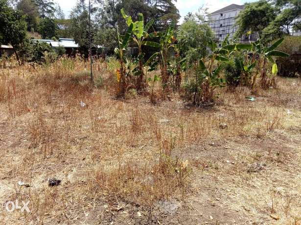 Prime 1/8acre plot Ngong - image 4