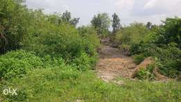 Genuine Lands for sale in Oshimli North and South LGAs Delta state