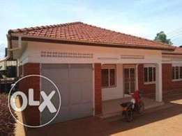 3bedroom executive house for rent in ntinda