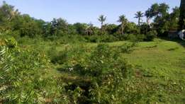 Fred Hunter 1/2 acre 2nd row beach plot in Tiwi south coast