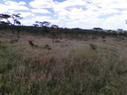12 Acres in Mutara Thome, Rumuruti