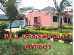 Empire like 3 bedroom mansion for rent in Kisaasi at 1.5m