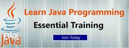 Java programming training for 25k only- offer lasts till October