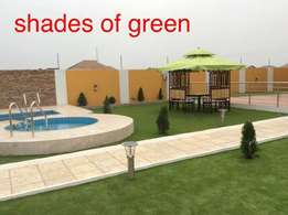 Shades of Green (Synthetic Grass for Sale)