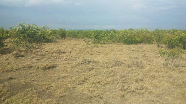 lands,plots and properties agent Limuru Town - image 3