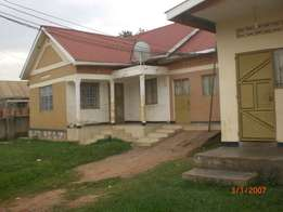 7 units of two bed room rentals go for 120m and earn 1.65m in Bweyoger