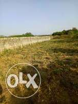 3000sqm of commercial land for sale in Katampe main.N70m