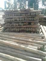 Treated poles sales and supply