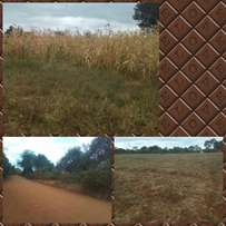 Three acres for sale...in mwea kirinyaga