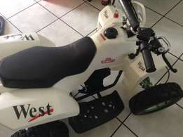 50 cc quad for sale - 6 months old - R4250