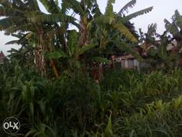 100x100 plot for sale in muthure