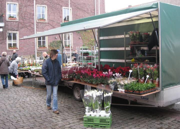 Blumentransporter