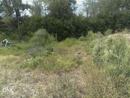 land 1/2 acre for sale touching river st patrick