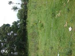 Plot on sale at nyamataro in kisii 50 by 100.50 metres from main road.