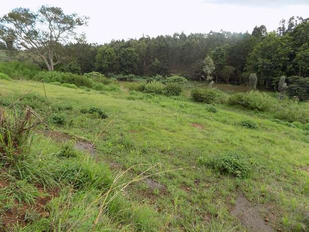 Thika Greens 1/4 acre plot for sale Thika - image 2