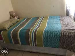 Single Room in Hatfield to rent