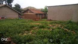 3plots 50*100fts each all together at 37m each in kira