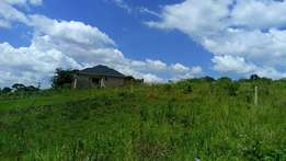 Quck sale 50 by 100 ft plot in Namugongo at 25m