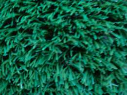 Artificial grass fix and supply