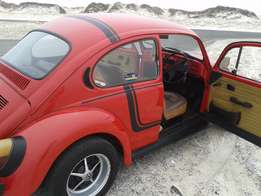 Beetle Headturner for Sale