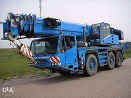 Terex Demag AC 50-1 - To be Imported