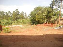 plot of 50ft*100ft in gayaza majejje sub county at 7m