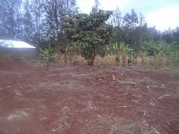 Prime Plot for sale at kenol Town measuring 50 by 100