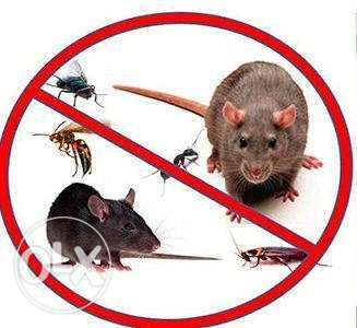 Insect control, crawling, rodents, snakes