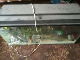 Fish tank and accessories for sale.