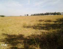1/4 Acre Land SALE - NAKURU