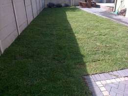 Instant lawns, Lawndressing, Compost, Topsoil at affordable prices
