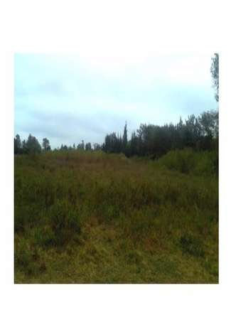 Very prime 5 acres land for sale in Nanyuki Westlands - image 1