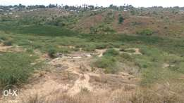 20 acres of land for sale..