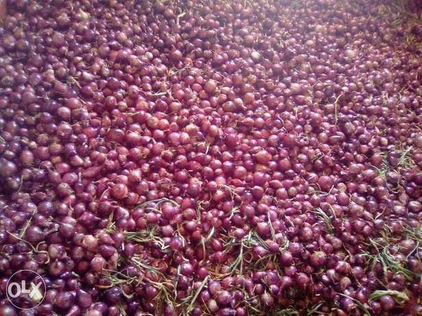 Onions for sale .dry and in store ready for selling. Utawala - image 1