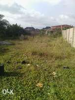 1 plot of Land for sell at ojo