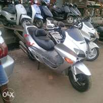 Speed Bike, affordable and reliable