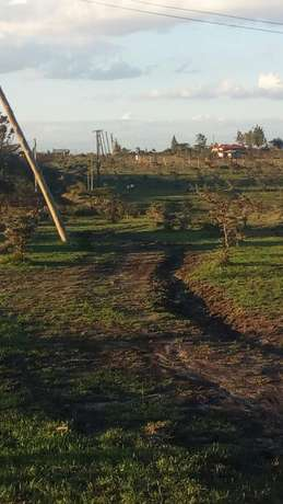 Land 2 acres very prime and very accessible After twala town Ongata Rongai - image 1