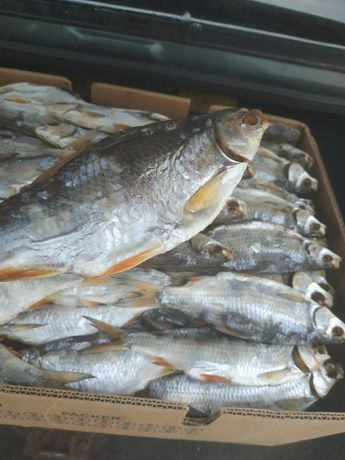 517647e0151aa7 Тарань , риба в'ялена, суха , окунь потрошений.: 140 грн. - Продукти ...