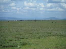1020ac land on sale sultan hamud 5km from mombasa road idle 4 lodge