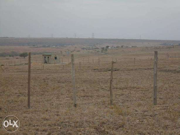 50x100 Plots at Kitengela-Acacia, Near Senior Chief Mutunkei Primary Nairobi CBD - image 2