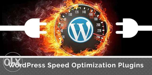I WillSpeed Up Your Wordpress Site With Google Pagespeed In 24hrs Nairobi CBD - image 1