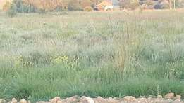 2 farm portions in Bronkhorspruit to lease / rent (price negotiable)