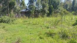 Half acre at 600 meters from tarmac at Lower kabete