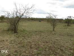 3¼ Acres in Juja Farm hi