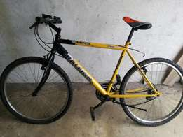 Bicycles(2)